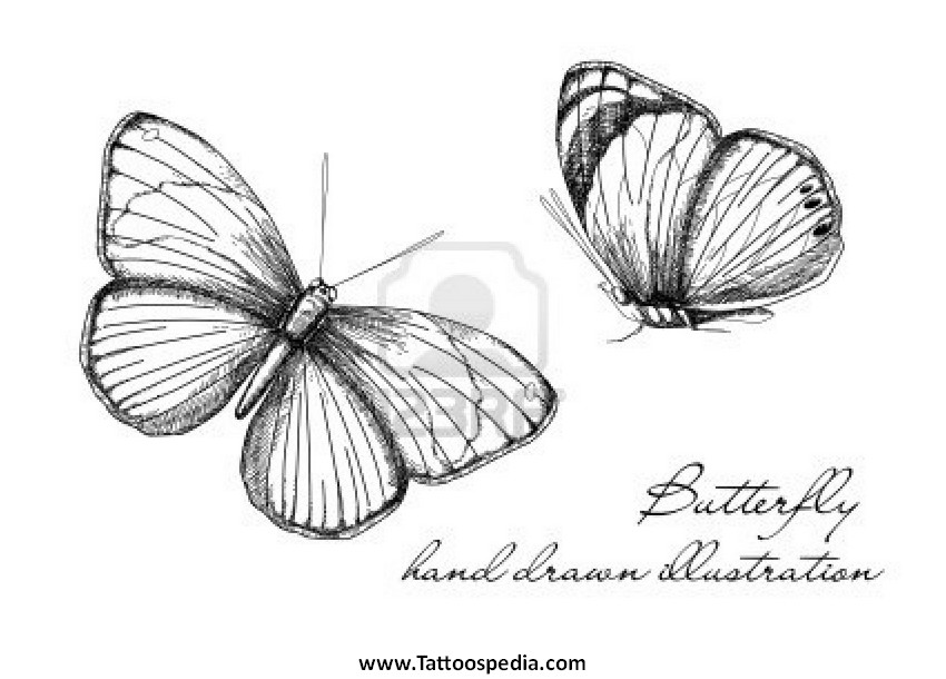 Vintage Butterfly Tattoos 64