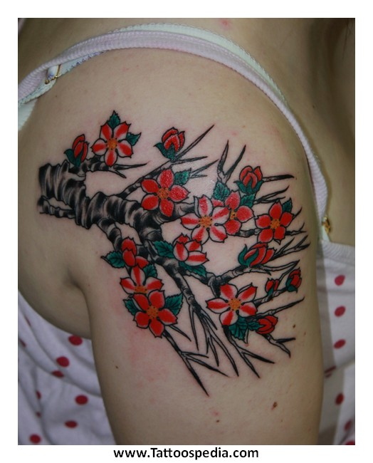 Cherry blossom tattoo chinese meaning 5 for Chinese cherry blossom tattoo