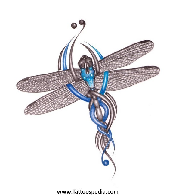 Celtic Dragonfly Drawings Dragonfly Tattoos Tribal 3 «