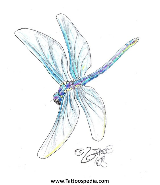 Japanese Dragonfly Tattoo Designs 2