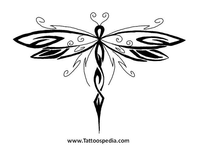 Celtic Dragonfly Drawings Dragonfly Tattoo 11 «