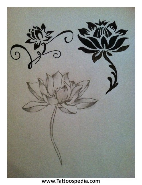 Lotus Flower Tattoos Tumblr 2