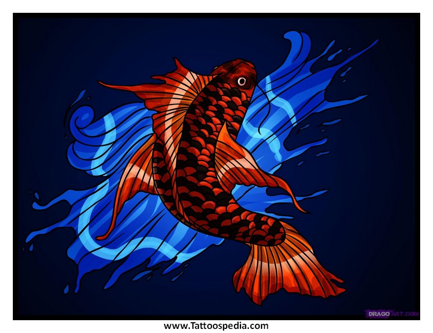 Red and blue koi fish tattoo 5 for Blue and white koi fish