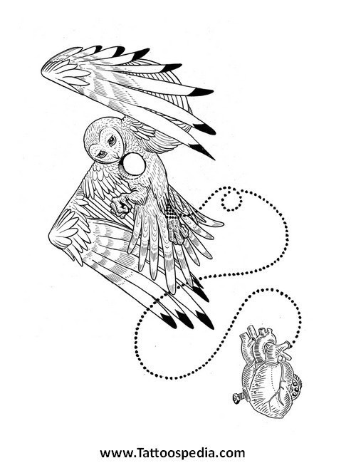 How To Draw A Owl Tattoo 9