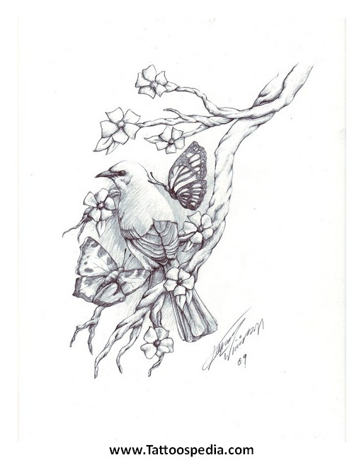 Dove tattoo drawings